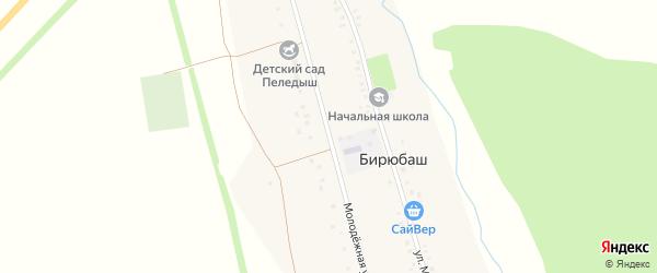 Молодежная улица на карте деревни Бирюбаша с номерами домов