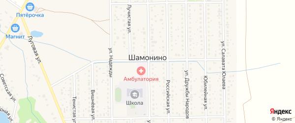 Насыпная улица на карте деревни Шамонино Башкортостана с номерами домов