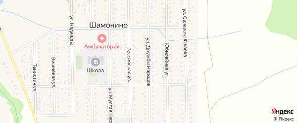 Улица Дружбы Народов на карте деревни Шамонино с номерами домов