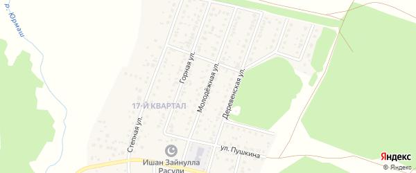 Молодежная улица на карте деревни Шамонино Башкортостана с номерами домов