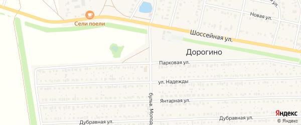 Парковая улица на карте деревни Дорогино с номерами домов