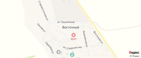 Улица Тружеников на карте деревни Восточного Башкортостана с номерами домов