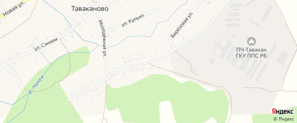 Березовая улица на карте деревни Таваканово Башкортостана с номерами домов