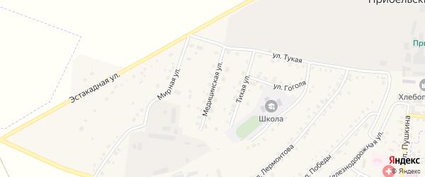 Медицинская улица на карте села Прибельского Башкортостана с номерами домов