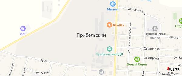 Горная улица на карте села Прибельского Башкортостана с номерами домов