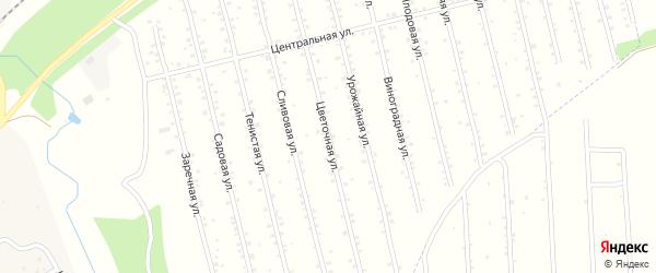 Цветочная улица на карте территории СО Геи Башкортостана с номерами домов