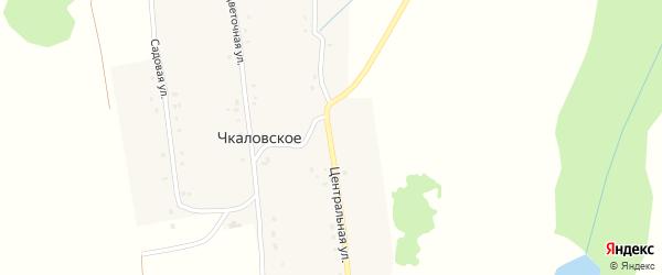 Центральная улица на карте деревни Чкаловского Башкортостана с номерами домов