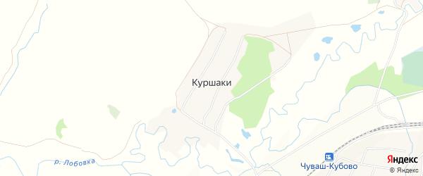 Карта деревни Куршаки в Башкортостане с улицами и номерами домов