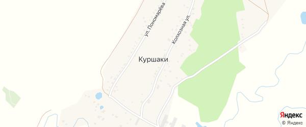 Лесная улица на карте деревни Куршаки Башкортостана с номерами домов
