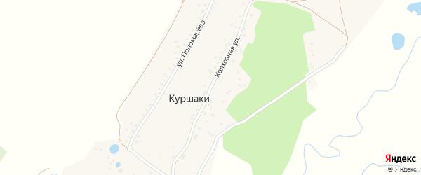 Колхозная улица на карте деревни Куршаки Башкортостана с номерами домов