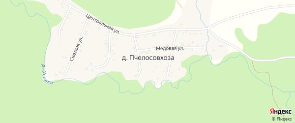Светлая улица на карте деревни Пчелосовхозы с номерами домов