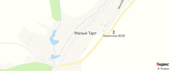 Центральная улица на карте деревни Малого Тарта Пермского края с номерами домов