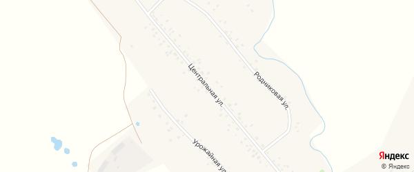Центральная улица на карте деревни Карткисяка с номерами домов