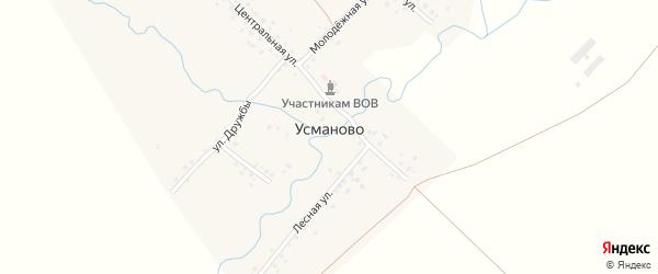 Молодежная улица на карте деревни Усманово с номерами домов