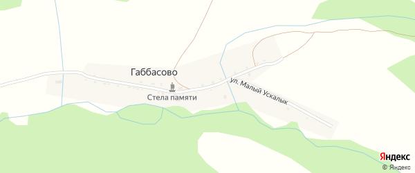 Улица Малый Ускалык на карте деревни Габбасово Башкортостана с номерами домов