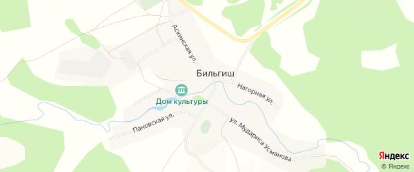Карта деревни Бильгиша в Башкортостане с улицами и номерами домов