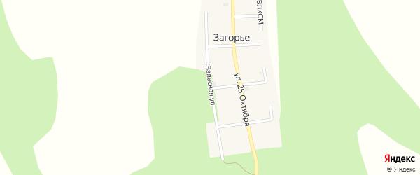 Залесная улица на карте деревни Загорья с номерами домов