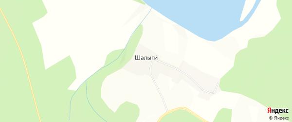 Карта деревни Шалыги города Чусового в Пермском крае с улицами и номерами домов