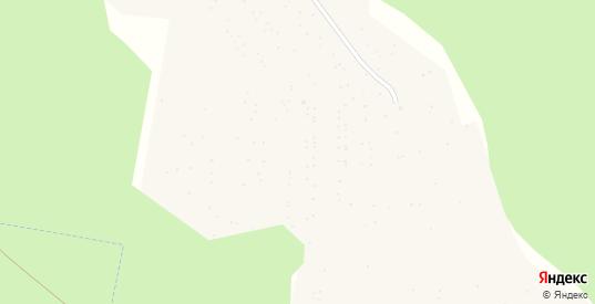Сад СНТ 11 Химиков в Аше с номерами домов на карте. Спутник и схема онлайн
