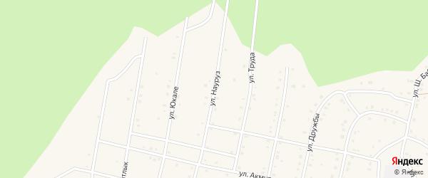 Улица Науруз на карте села Старосубхангулово Башкортостана с номерами домов