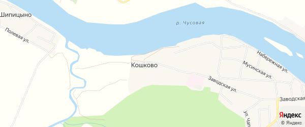 Карта деревни Кошково города Чусового в Пермском крае с улицами и номерами домов