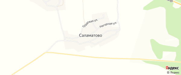 Карта деревни Саламатово города Чусового в Пермском крае с улицами и номерами домов