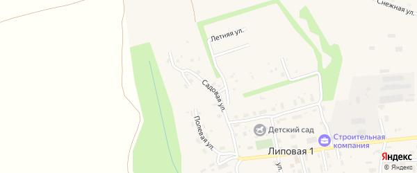 Садовая улица на карте деревни Липовой I с номерами домов