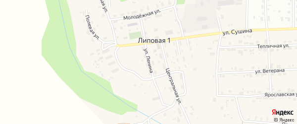 Улица Ленина на карте деревни Липовой I с номерами домов
