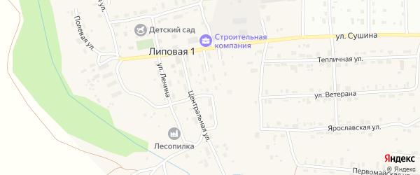 Пионерская улица на карте деревни Липовой I с номерами домов