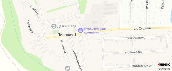 Лысьвенская улица на карте деревни Липовой I с номерами домов