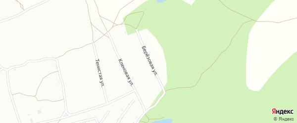 Березовая улица на карте деревни Липовой I с номерами домов