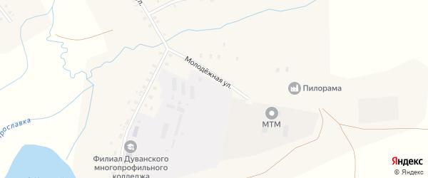 Молодежная улица на карте села Ярославки Башкортостана с номерами домов