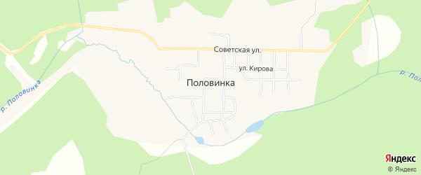 Карта поселка Половинки города Чусового в Пермском крае с улицами и номерами домов