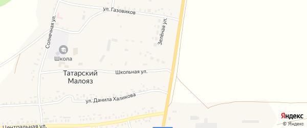 Школьная улица на карте села Татарского Малояза с номерами домов