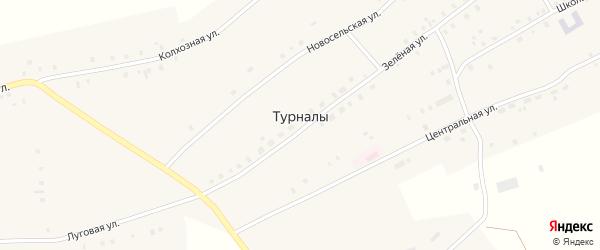 Зеленая улица на карте села Турналы с номерами домов