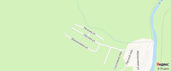 Лесная улица на карте деревни Катайки с номерами домов
