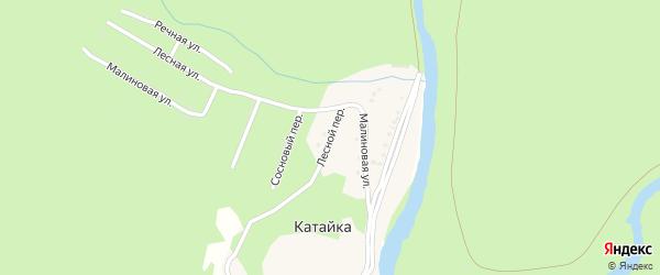 Лесной переулок на карте деревни Катайки Башкортостана с номерами домов