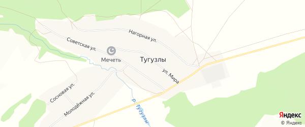 Карта деревни Тугузлы в Башкортостане с улицами и номерами домов