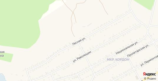 Лесная улица в Бакале с номерами домов на карте. Спутник и схема онлайн