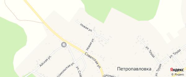 Новая улица на карте села Петропавловки с номерами домов