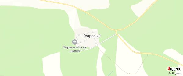 Карта Кедрового поселка в Челябинской области с улицами и номерами домов