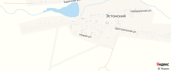 Новая улица на карте Эстонского поселка с номерами домов