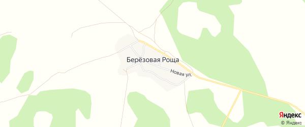 Карта поселка Березовой Рощи в Челябинской области с улицами и номерами домов