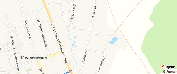 Новая улица на карте села Медведевки с номерами домов