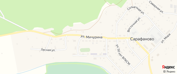 Улица Мичурина на карте деревни Сарафаново с номерами домов