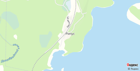 Карта железнодорожной остановки Рипус в Кыштыме с улицами, домами и почтовыми отделениями со спутника онлайн