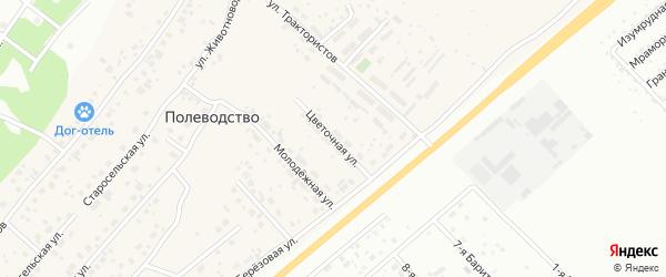 Цветочная улица на карте поселка Полеводства с номерами домов