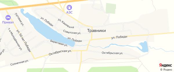 Карта села Травники в Челябинской области с улицами и номерами домов