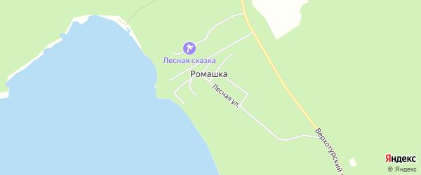 Карта поселка Ромашки города Верхней Пышмы в Свердловской области с улицами и номерами домов