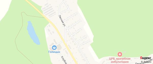 Лесной 3-й переулок на карте поселка Вишневогорска Челябинской области с номерами домов